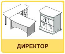 Офисная мебель на заказ для кабинета директора